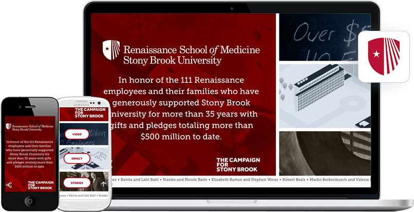 Web Design Case Study - Stony Brook Foundation